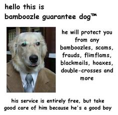 Contact now! 1-800-DOGE