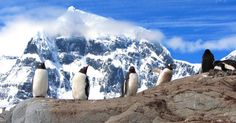Travel to Antarctic Peninsula and South Shetland Islands  Quark Expeditions, Antarctic Cruise #luxurylink