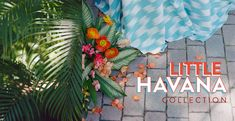 La Tavola Fine Linen - Event Fine Linen & Fine Linen Rental