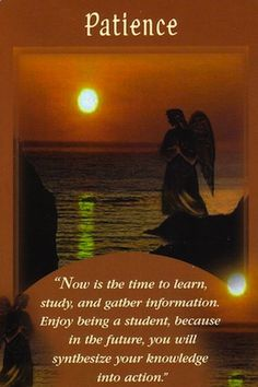 Although you may be aching to begin a new project, now is not the time. You are in the vital phase of gathering right now... (keep reading: http://www.freeangelcardreadingsonline.com/2013/daily-angel-card-reading-patience/) #angels #angelcards #doreenvirtue