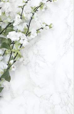 White Blooms & Marble Styled Stock Graphics White Blooms & Marble Office Desk Styled Stock Photo / Product Mockup / Styled Stock Photography by Silver Birch Creative Leaves Wallpaper Iphone, Floral Wallpaper Phone, Gold Wallpaper Background, Vintage Flowers Wallpaper, Iphone Homescreen Wallpaper, Plant Wallpaper, Aesthetic Iphone Wallpaper, Flower Wallpaper, Wallpaper Backgrounds