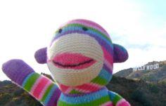 Pier 1 Rainbow Sock Monkey visits Hollywood