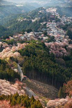 Mount Yoshino, Japan