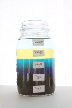 Learn about the 5 layers of an ocean (also called ocean zones) with your child using this hands-on activity with materials already in your pantry!