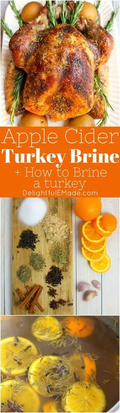 Looking for an amazing Turkey Brine Recipe? This Apple Cider Turkey Brine recipe is the perfect way to make your turkey juicy and completely delicious! Apple Cider Turkey Brine Recipe, Smoked Turkey Brine, Easy Turkey Brine, Best Turkey Recipe, Roasted Turkey, Turkey Recipes, Turkey Rub, Chicken Recipes, Thanksgiving Turkey