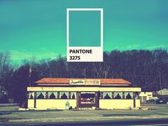 Posts about pantone written by mvasilev Love Design, Design Art, Graphic Design, Pantone Universe, Color Swatches, Season Colors, Pantone Color, Go Green, Print Ads