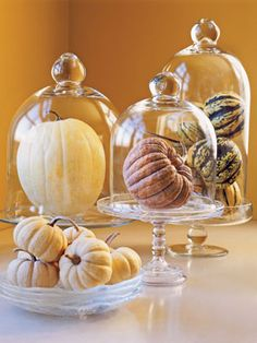 Display all kinds of gourds under glass cloches, and skip the carving this season.