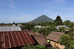 Jailolo Mountain, West Halmahera, North Maluku. Indonesia