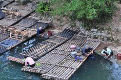 Bamboo Raft at Yulong River, Yangshuo, Guilin Passport Stamps, Guilin, Rafting, Palace, Bamboo, China, River, Explore, Palaces