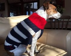 Made to order Dog Jumper, Dog Sweater, hand knitted in UK, with or without harness hole and optional pocket Pug, Dachshund, Waterproof Dog Coats, Jack Russell, Dog Jumpers, How To Start Knitting, Complimentary Colors, En Stock, Dog Sweaters