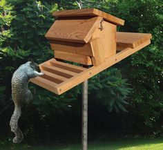 Squirrel-Proof Bird Feeder Woodcraft Pattern