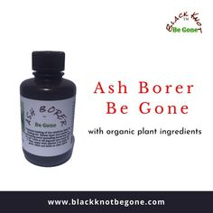Ash Borer Be Gone is an all natural product with NO pesticides or pharmaceuticals added. The healthy ingredients will feed the xylem vascular system to feed the whole tree and especially the phloem and  cambium layer where the ash borer creates the damage. Order only at $46.55. Call: 607-343-7781 for order details.  #blackknotdisease #blackknotfungus #blackknot #blackknotbegone #blackknotdiseasestreatment #blackknotfungustreatment #cherrytreefungus #plumtreediseasestreatment Cycle Of Life, Life Cycles, Ash Borer, The Pipeline, Shipping Pallets, Michigan State University, Beneath The Surface, Thing 1