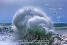 """A giant wave with inspiring quote: """"The sea is an ancient language that I can not decipher."""" Jorges Luis Borges, writer. Prints available at http://giovanni-allievi.artistwebsites.com/art/all/inspiring+quotes/all"""