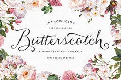 So pretty! Just $20 | Check out Butterscotch Typeface by Nicky Laatz on Creative Market