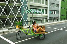 Decora Lovers: Bicicleta-jardim: urbana, bela e sustentável