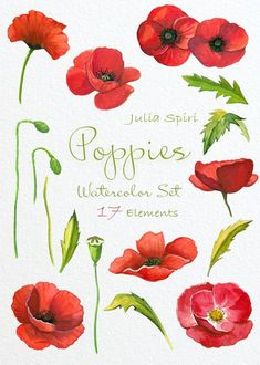 Watercolor Poppies Flowers Clipart Poppy Hand by JuliaSpiri Watercolor Poppies, Red Poppies, Poppy Flowers, Tattoo Watercolor, Watercolor Wedding, Poppies Painting, Yellow Roses, Purple Flowers, Spring Flowers