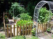 little raised garden-I would love to have some organic raised beds in my backyard.