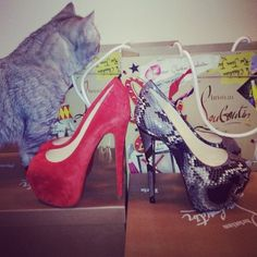 Louboutins want want