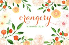 Orangery. Watercolor clip art. by LABFcreations on @creativemarket