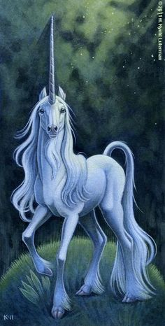 The Most beautiful and majestic mythological creature - the Unicorn. The word Unicorn literally means One horn. Nowadays, we think of the Unicorn as a horse with a single horn on its forehead but the original mythical creature actually has its own unique and magical features. It has the tail of a lion and cloven hooves and, if the unicorn is a male (like the above) it also has a goat's beard underneath its chin.