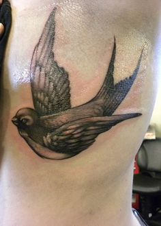 Harry styles has two of these dark sparrow tattoos on his chest