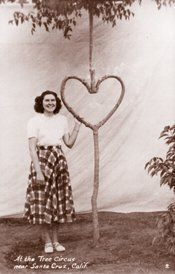 This is one of Axel Erlandson's Circus trees with his wife Leona. His trees are most famously known as Circus trees around the world.