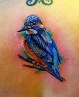Kingfisher tattoo Kingfisher Tattoo, Tatoos, Watercolor Tattoo, Fancy, Tattoo Ideas, Bird, Google, Watercolor Tattoos, Birds
