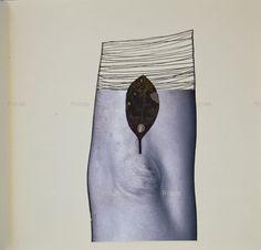 Autora. Rosae Román. Rosa Román Valera. Perteneciente al libro La Flor del Cuerpo y el Tiempo II