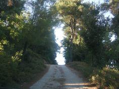 Fradato, Ikaria island, Greece