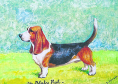 Ch Blaby Hal: a dual purpose #hound by Nick Waters