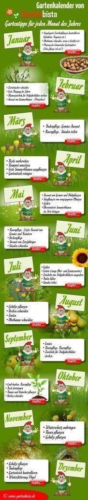 Mit Fruchtwechsel Zu Mehr Erfolg Im Gemüsegarten | Februar 2013