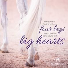 Horses willingly share love that can only be held by huge hearts.