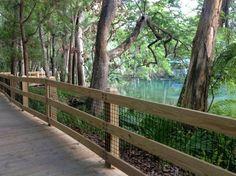 8. Homosassa Springs Wildlife State Park
