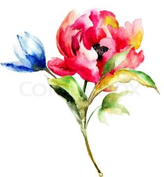 Watercolor painting of spring flowers stock photo on Colourbox
