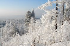 Winter in Yakutsk, Russia.  The Coldest City on Earth, according to Google.