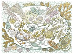 Shell, Seaweed and Feather - Angie Lewin - screen print Angie Lewin, Art For Art Sake, Silk Screen Printing, Wood Engraving, Beach Art, Limited Edition Prints, Prints For Sale, Printmaking, Contemporary Art