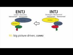 This guy has great MBTI vids