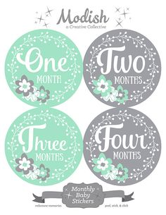FREE GIFT, Monthly Baby Stickers Girl, Baby Month Stickers Girl, Monthly Bodysuit Stickers Girl, Flowers, Mint, Gray, Grey