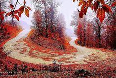In the way of Drazno village, Kordkoy, Golestan province, Iran (Persian:  مسیر روستای درازنو, کردکوی, استان گلستان) Photo credit: Hessam Ghasemi