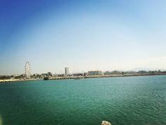 #rimini #italia #italy #igers #igersitalia #instaitalia #instagood #instafollow #instalike #instatravel #travel #instaview #view #sea #beach #sun #summer #ruota #palace #follow4back #followforfollow #f4f #l4l #likeforlike #like4back #love #picoftheday #photooftheday by steavi91