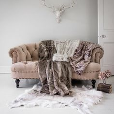 We're not quite sure where summer's gone - but we'll be snuggling into all our throws tonight! Featuring: Chablis & Roses Blush Velvet Sofa Arctic Reindeer Rug Husky Brown Fur Throw Ice Queen Fur Throw Silver Fox Faux Fur Throw and Antique Stag Head. #frenchbedroomcompany #interiordecor #iba17 #cornersofmyhome #thinkpink #tickledpink #vogueforvelvets #parisapartment #parisiennestyle #flashesofdelight #britishsummertime