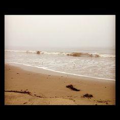CJU pre-game at the beach - Via @jeremypalmer on Twitter. #CJU2012