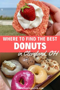 Where to find the best donuts in Cleveland, Ohio, including classic options, vegan options, and more! Cleveland Food, Cleveland Restaurants, Donut Company, Sour Cream Donut, Raised Donuts, Bacon Donut, Frost Donuts, Vegan Doughnuts, Apple Fritters