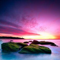 John Wu Pink Sunset