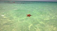 La République Dominicaine hors des sentiers battus : Bahia de las Aguilas - Blog TravelBird Belgique