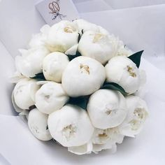 flowers and white