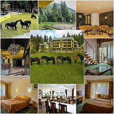 Hotelul fermecător şi confortabil Casa Viorel este situat într-o zonă liniştită şi pitorească din Poiana Braşov, oferind relaxare completă într-un peisaj luxuriant, plin de flori.