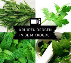 7 stappen om verse kruiden snel in de microgolf te drogen.