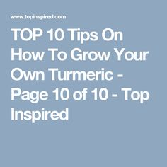 TOP 10 Tips On How To Grow Your Own Turmeric - Page 10 of 10 - Top Inspired