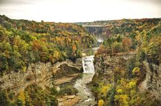 .... Genesee river and waterfall flowing through the canyon of Letchworth State Park with bridge in the background in the fall.